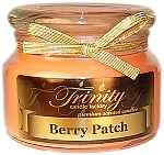 Berry Patch - Traditional - Soy Jar Candle - 12 oz