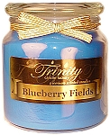 Blueberry Fields - Traditional - Soy Jar Candle - 18 oz