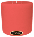 Birds of Paradise - Pillar Candle - 6x6