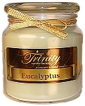 Eucalyptus - Traditional - Soy Jar Candle - 18 oz