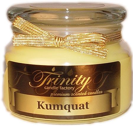 Trinity Candle Factory  Kumquat Pillar Candle 12x4x2 Log