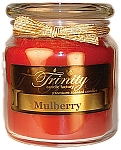 Mulberry - Traditional - Soy Jar Candle - 18 oz