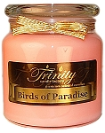 Birds of Paradise - Traditional - Soy Jar Candle - 18 oz