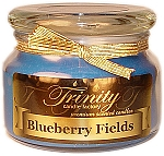 Blueberry Fields - Traditional - Soy Jar Candle - 12 oz