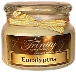 Eucalyptus - Traditional - Soy Jar Candle - 12 oz