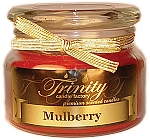 Mulberry - Traditional - Soy Jar Candle - 12 oz