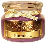 Plumeria - Traditional - Soy Jar Candle - 12 oz