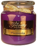 Plumeria - Traditional - Soy Jar Candle - 18 oz