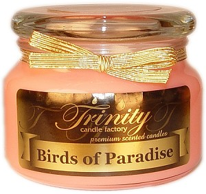 Birds of Paradise - Traditional - Soy Jar Candle - 12 oz